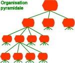 Organisation pyramidale