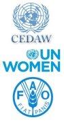 CEDAW, ONU Femmes, FAO
