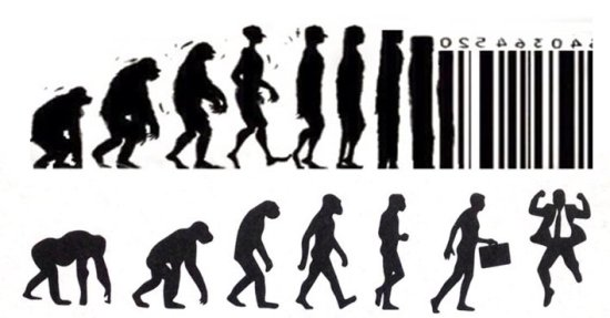 quelle évolution choisir
