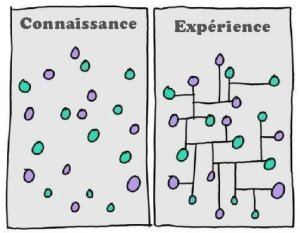 knowledge-experience
